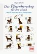 Das Pfotenhoroskop für den Hund - Was die Sterne über Ihren Liebling sagen