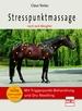Stresspunktmassage nach Jack Meagher - Mit Triggerpunkt-Behandlung und Dry Needling