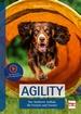 Agility - Der fundierte Aufbau für Freizeit und Turnier