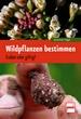 Wildpflanzen bestimmen - Essbar oder giftig?